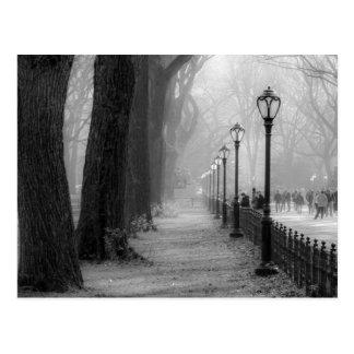 Svarten & vit landskap i Central Park Vykort