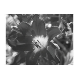 Svartvit blomma canvastryck