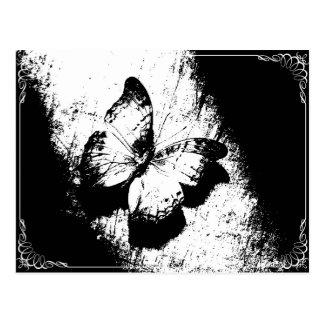 Svartvit fjäril vykort