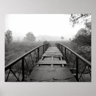 svartvit fotografi för vibrerande makro poster