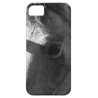 Svartvit häst iPhone 5 hud