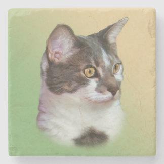 Svartvit katt, anpassade stenunderlägg