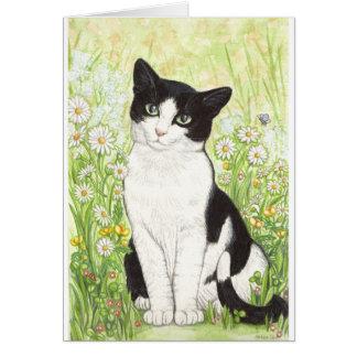 Svartvit katt med daisy hälsningskort