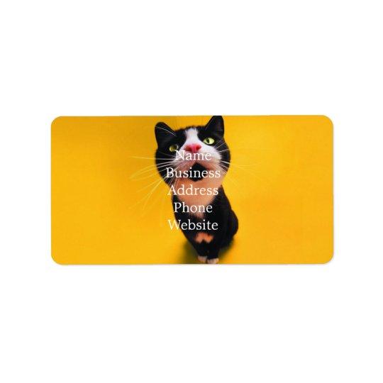 Svartvit katt-smoking katt-husdjur adressetikett