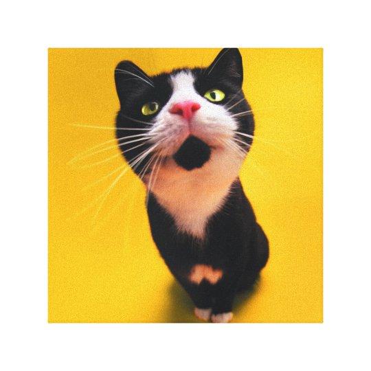 Svartvit katt-smoking katt-husdjur canvastryck