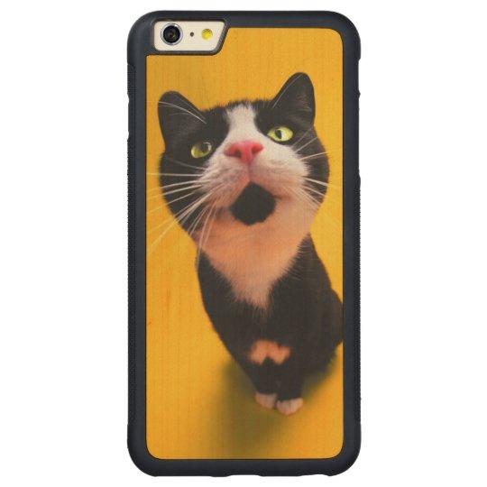 Svartvit katt-smoking katt-husdjur carved lönn iPhone 6 plus bumper skal