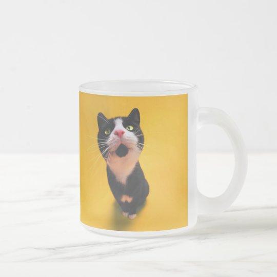 Svartvit katt-smoking katt-husdjur frostad glasmugg
