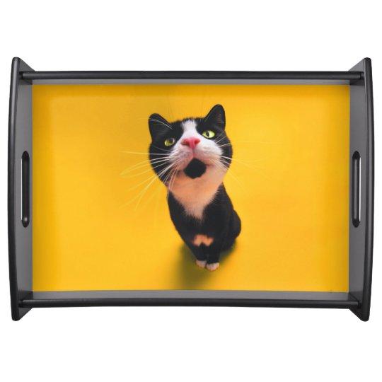 Svartvit katt-smoking katt-husdjur frukostbricka