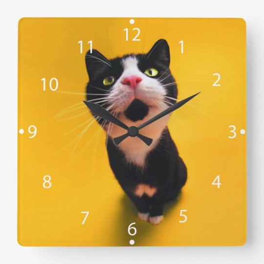 Svartvit katt-smoking katt-husdjur fyrkantig klocka