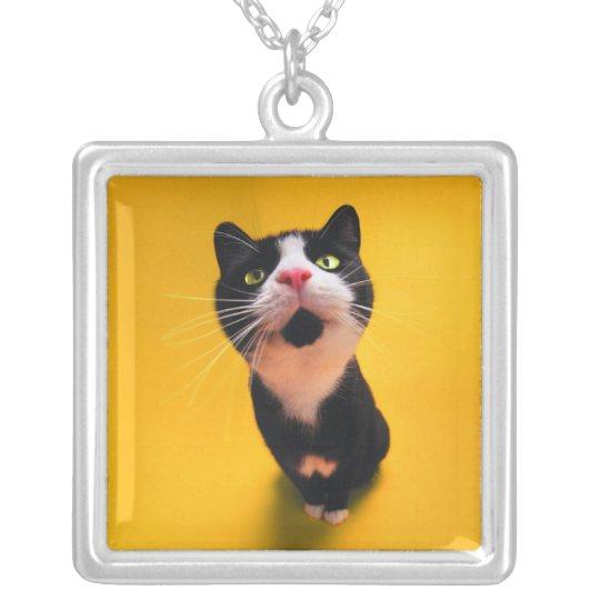 Svartvit katt-smoking katt-husdjur halsband med fyrkantigt hängsmycke