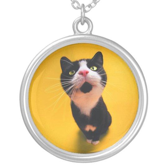 Svartvit katt-smoking katt-husdjur halsband med rund hängsmycke