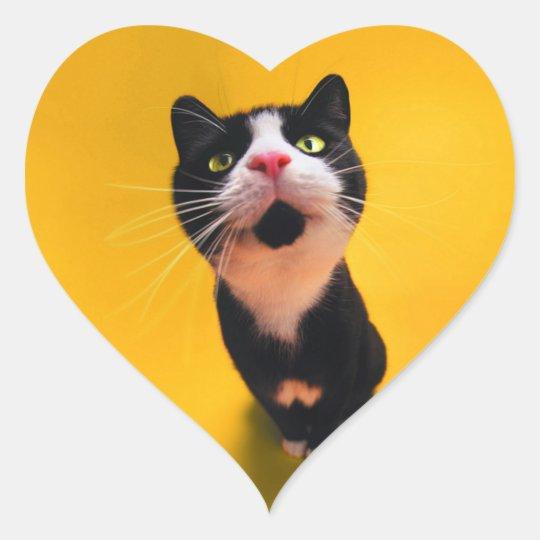 Svartvit katt-smoking katt-husdjur hjärtformat klistermärke