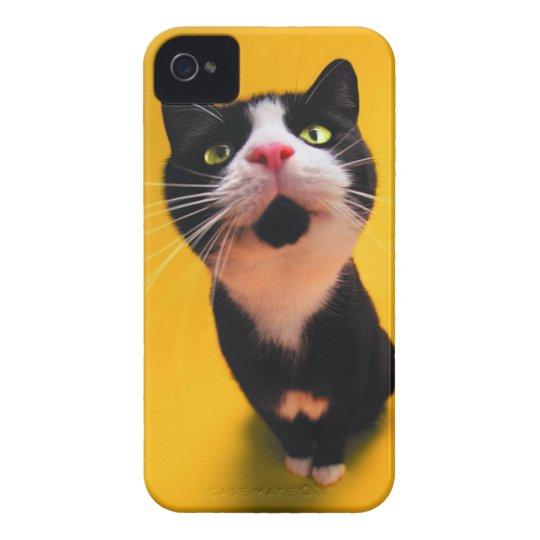 Svartvit katt-smoking katt-husdjur iPhone 4 cases