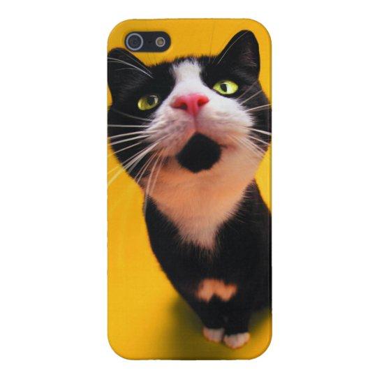 Svartvit katt-smoking katt-husdjur iPhone 5 hud