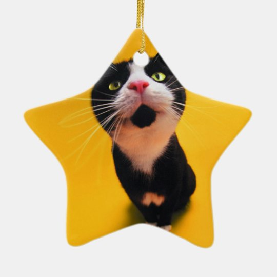 Svartvit katt-smoking katt-husdjur julgransprydnad keramik