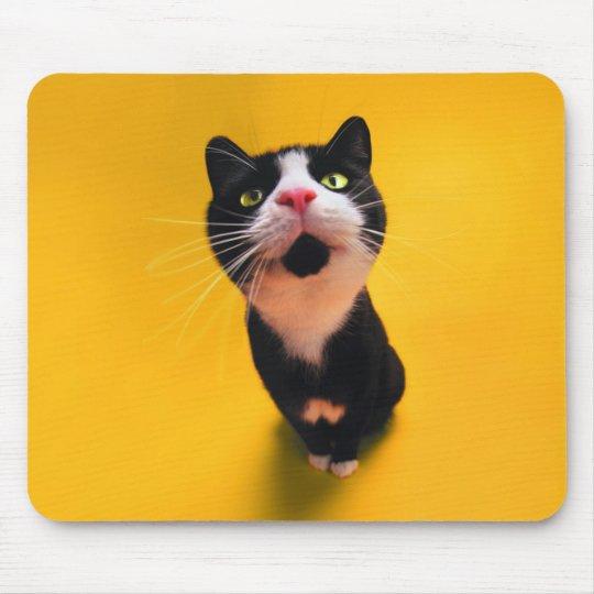 Svartvit katt-smoking katt-husdjur musmattor