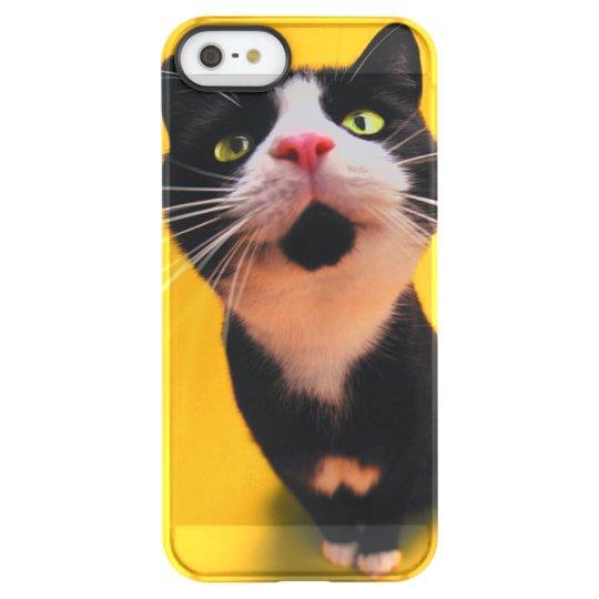 Svartvit katt-smoking katt-husdjur permafrost iPhone SE/5/5s skal