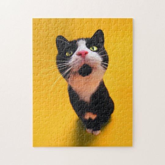 Svartvit katt-smoking katt-husdjur pussel