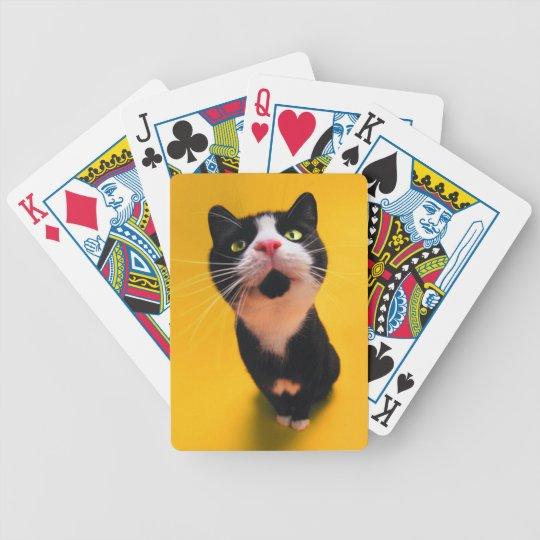 Svartvit katt-smoking katt-husdjur spelkort