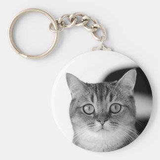 Svartvit katt tittar raksträcka på dig rund nyckelring
