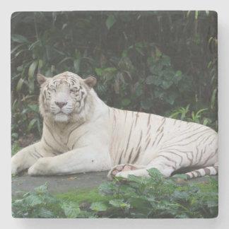 Svartvit kopplad av Bengal tiger och le Stenunderlägg