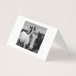 Svartvit ponnySale Kort