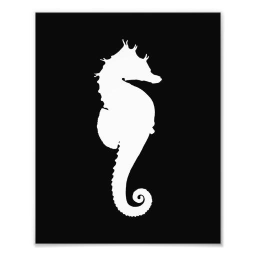 Svartvit Seahorse Fotografi