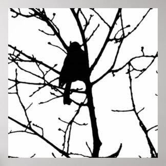 Svartvit Silhouette av chickadeen i ett träd Poster