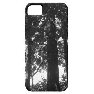 Svartvit skog barely there iPhone 5 fodral