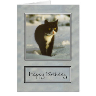svartvit snökattungegrattis på födelsedagen hälsningskort