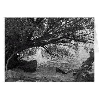 Svartvit trädSilhouette Hälsningskort