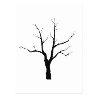 Svartvit uppsättning för vinterträd vykort