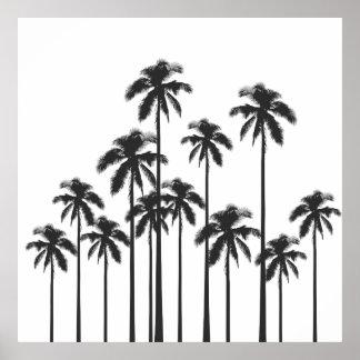 Svartvita exotiska tropiska palmträd poster