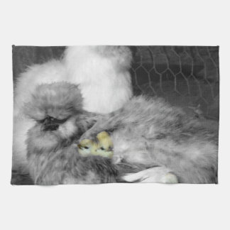 Svartvita Silkie hönor med gula chickar Kökshandduk