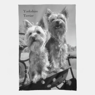 Svartvita Yorkshire Terriers Kökshandduk