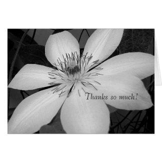 svartvitt blom- tack OBS kort