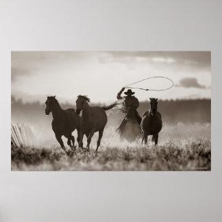 Svartvitt foto av en CowboyLassoing hästar Print