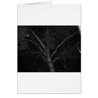 Svartvitt träd hälsningskort