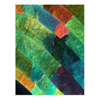 Svavel under ett mikroskop vykort