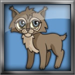 Cute Baby Lynx