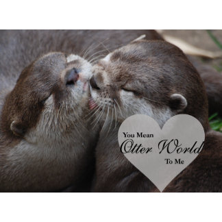 Otter World