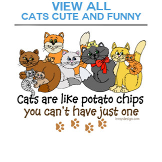 Cats Cute and Funny Sayings Quotes Slogans