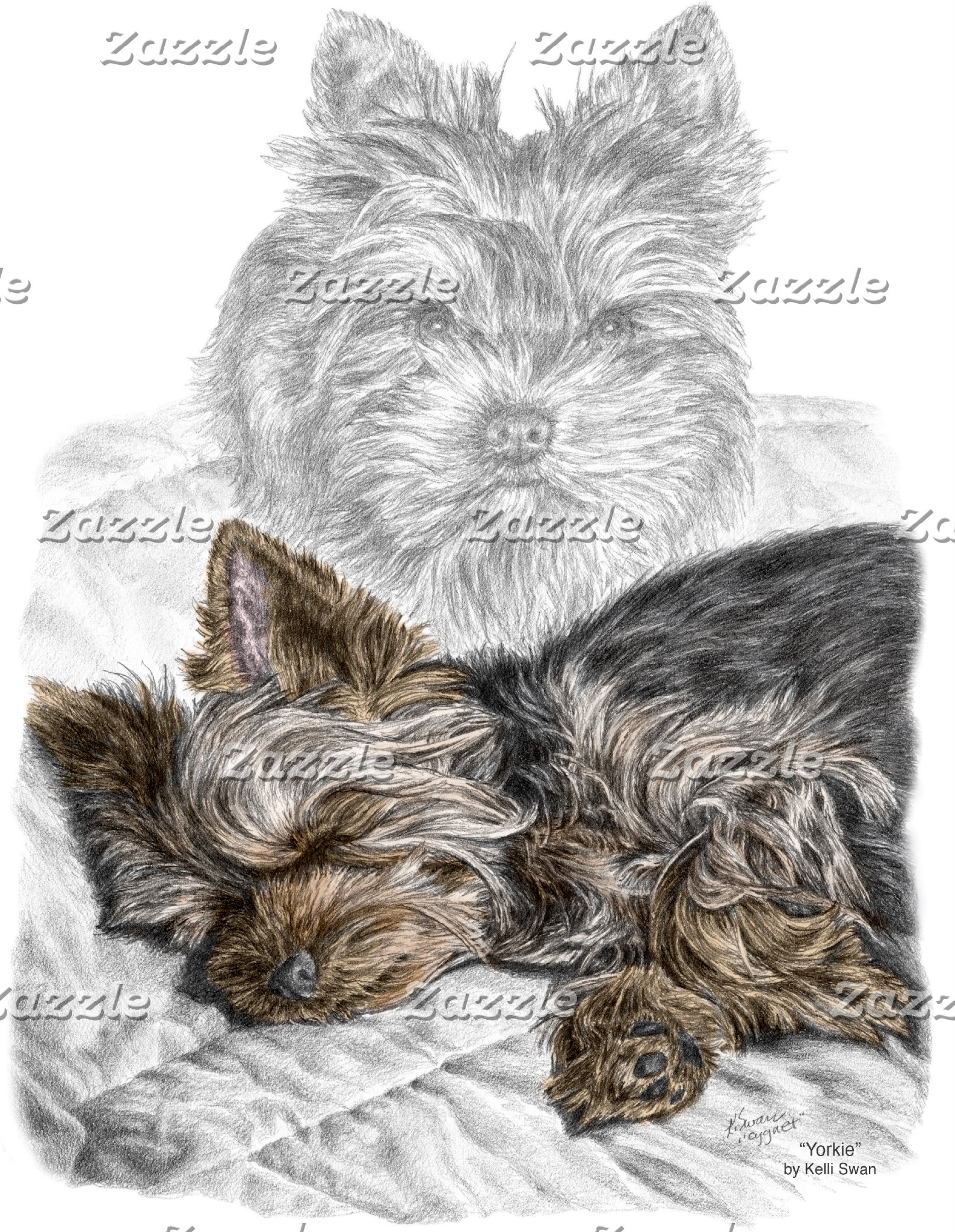 "Yorkshire Terrier Dog ""Yorkie"""