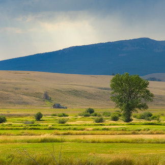 Granite County Montana