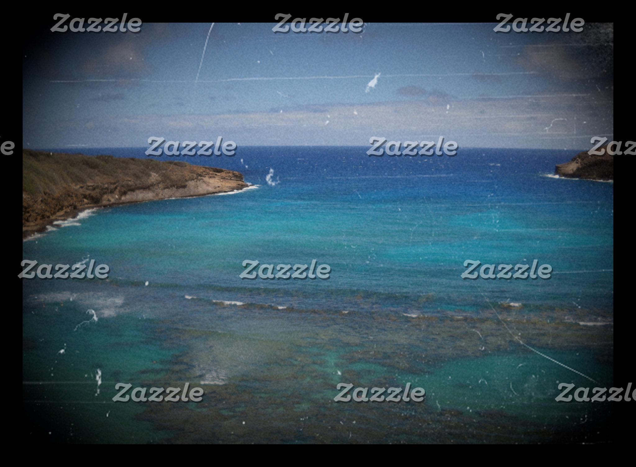 Hanauma Bay Artistic Photos