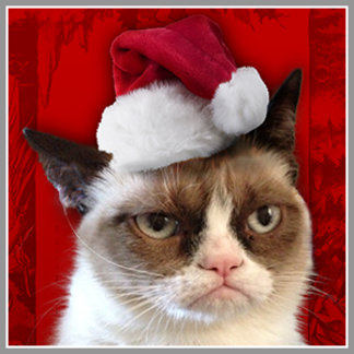 Holiday Grumpy Cat
