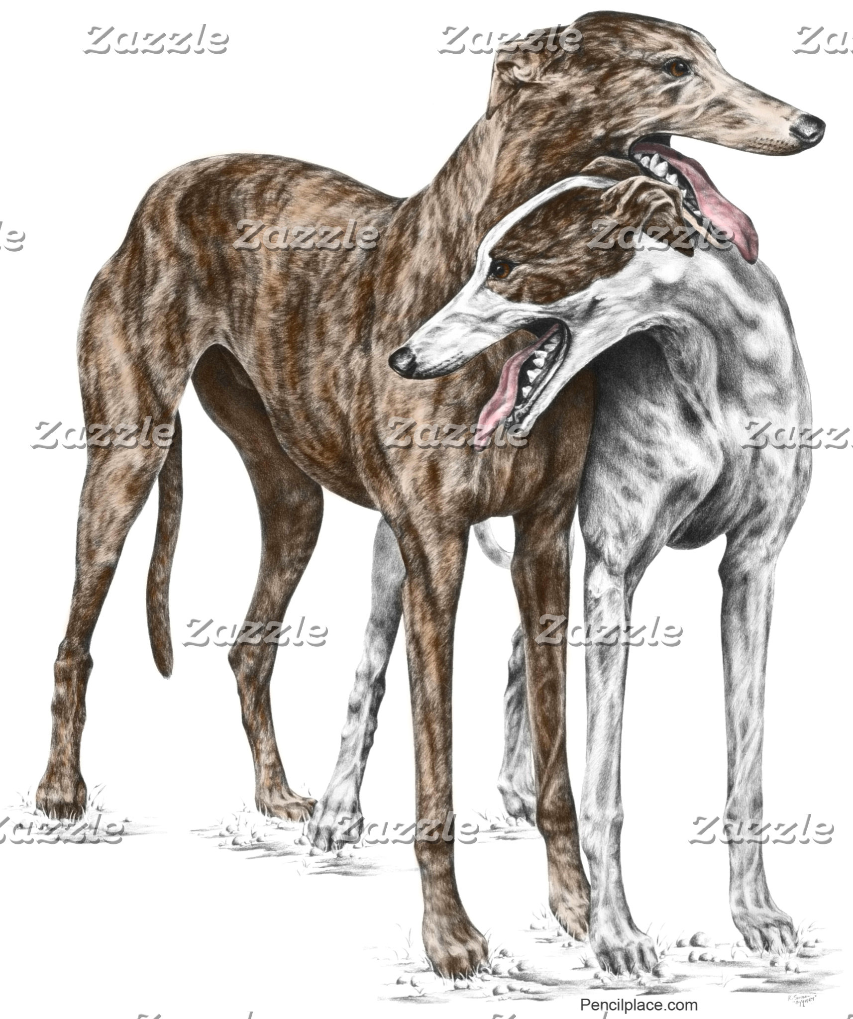Greyhound Dog Art