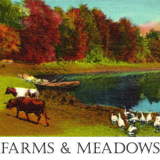 Farms and Meadows