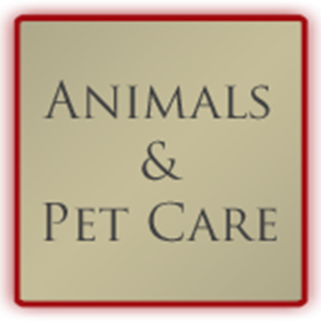 Animals and Pet Care