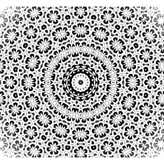 Black and White Kaleidoscope Pattern II